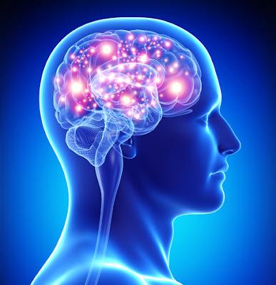 poder-cerebral