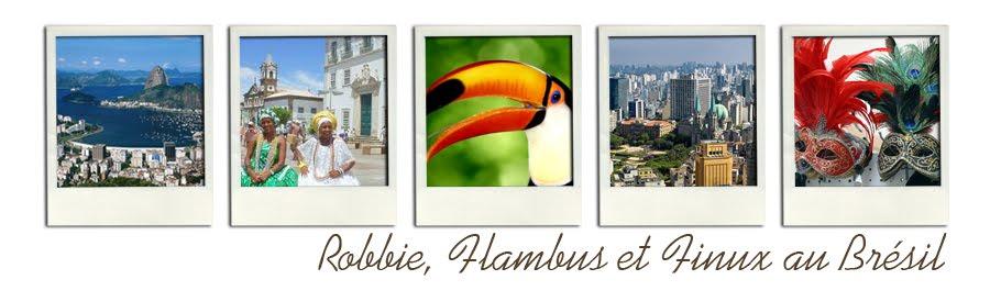 Robbie, Flambus et Finux au Brésil