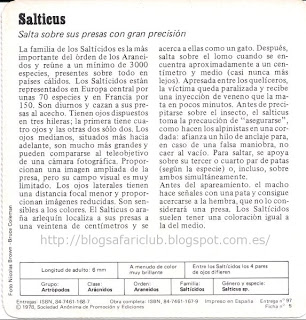 Blog Safari Club, características del Salticus
