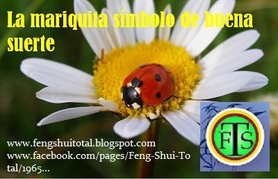 Feng shui total feng shui y suerte for Feng shui para la buena suerte