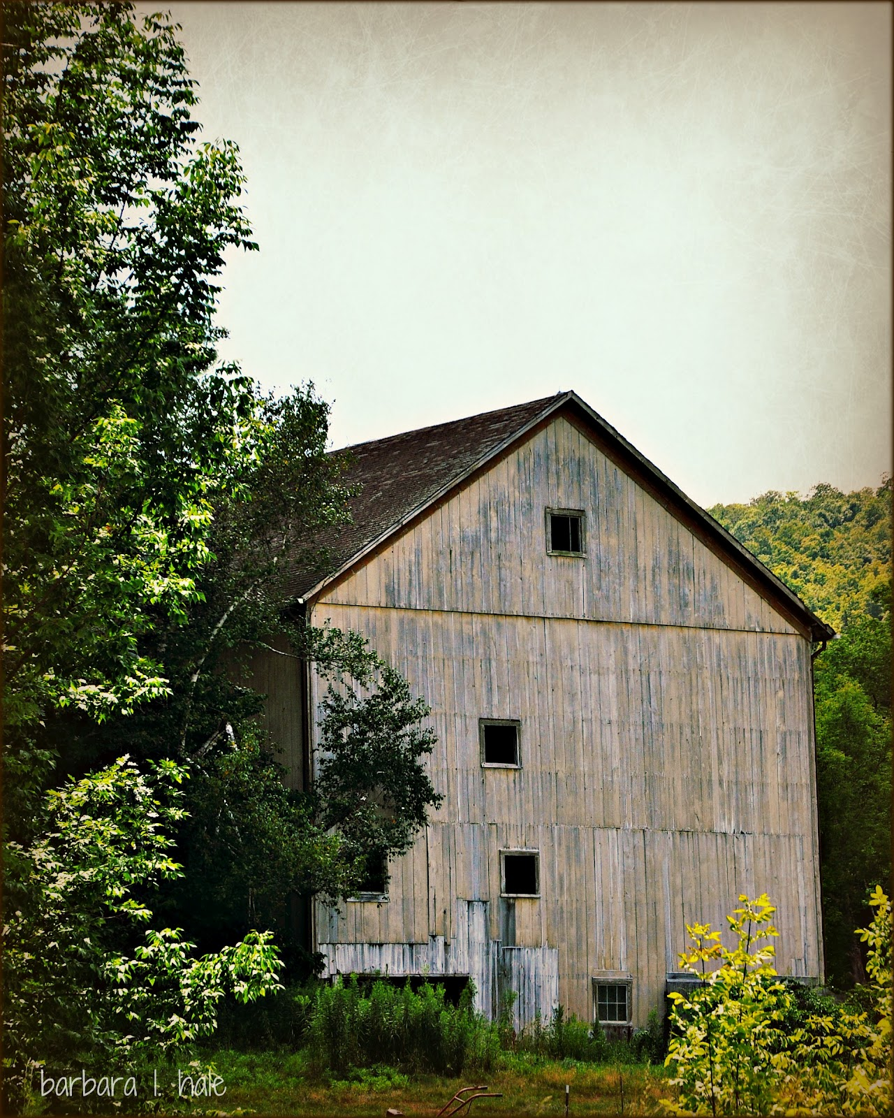 Commonplace Beauty Photography: Grey Barns…