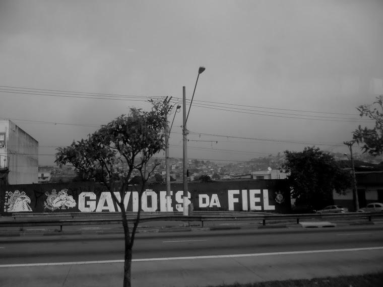 CA -gavioes da fiel- sao paulo-SP / BRASIL