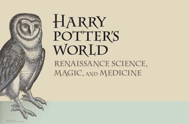 pseudoplocephalus  care of magical creatures