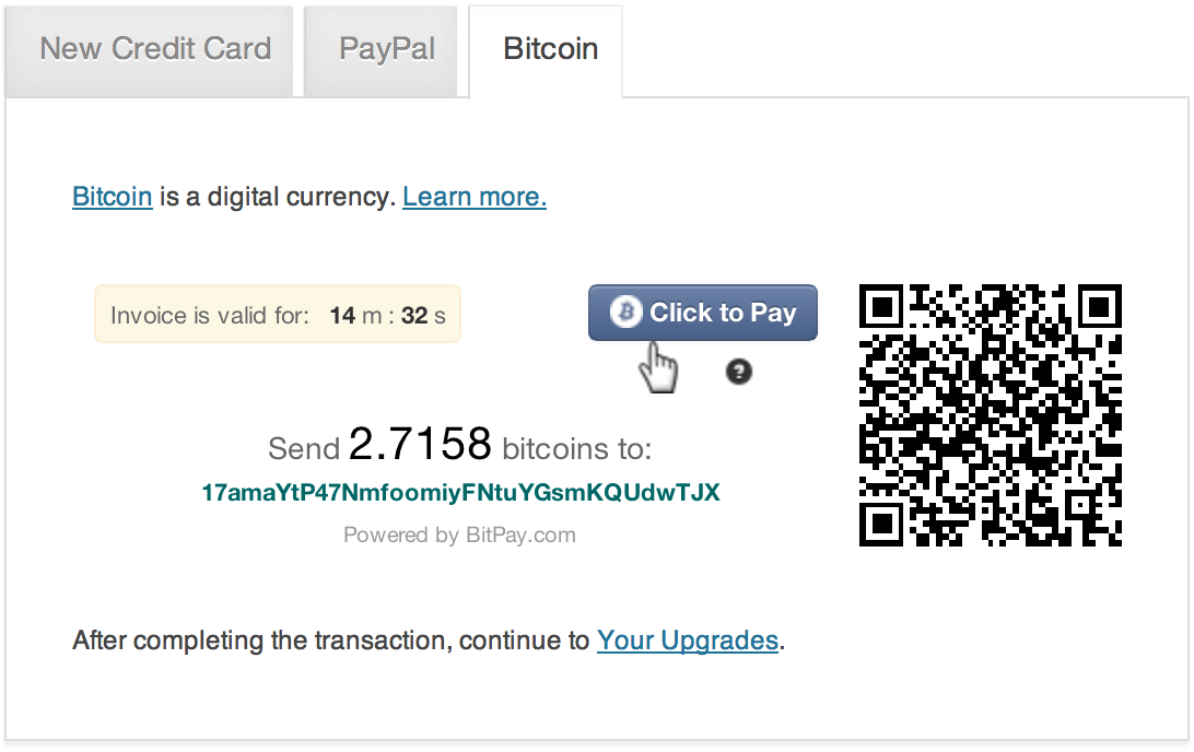 Accept BitCoins as a Means of Payment