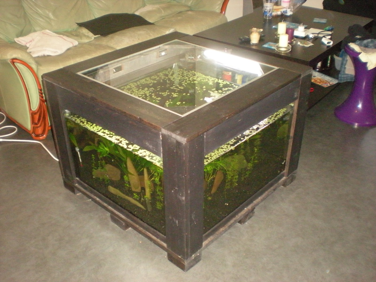 Table basse aquarium pas chere - Table basse aquarium design ...