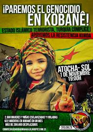 Solidaridad con Kobane