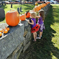 Halloween Pumpkin Display Stone Wall_New England Fall Events
