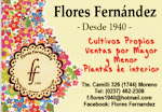FLORES FERNANDEZ