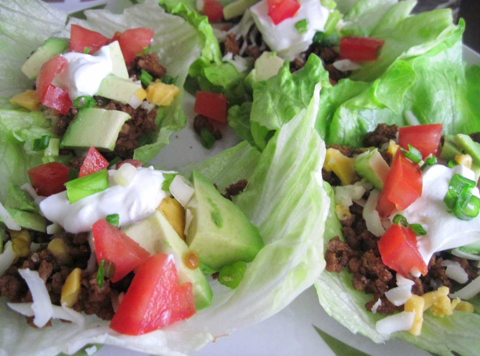 Low Carb Mexican Lettuce Wraps Recipe