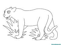 Mewarnai gambar Jaguar mengintai mangsa disemak-semak