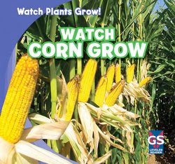 bookcover of WATCH CORN GROW  (Watch Plants Grow!)  by Kristen Rajczak