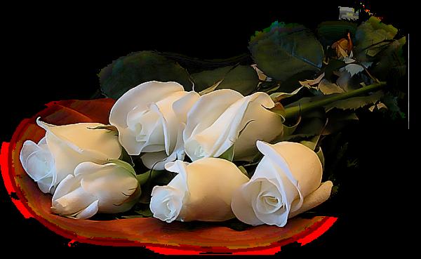 Flores+Marif_ESTILO-LARAH.png