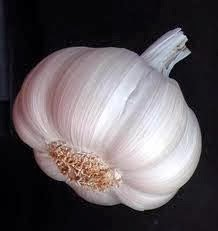 Benefits And Efficacy Of Garlic For Health And Endurance