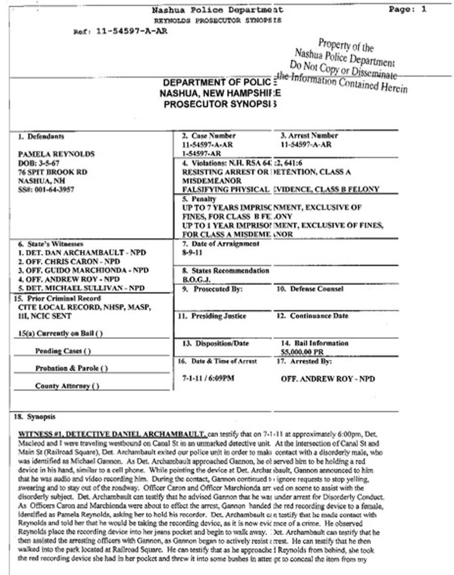 Detective Case File Template