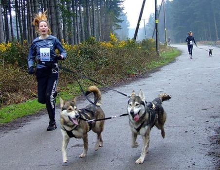 Equipes formadas por cachorro e seus donos competem em corrida de Canicross