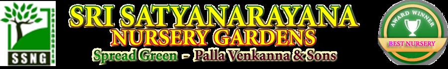 Sri Satyanarayana Nursery Gardens | SSNG | Palla Venkanna Nursery
