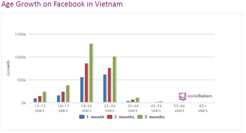 Marketing online (trực tuyến) ảnh hưởng lớn đến DN trong năm 2013