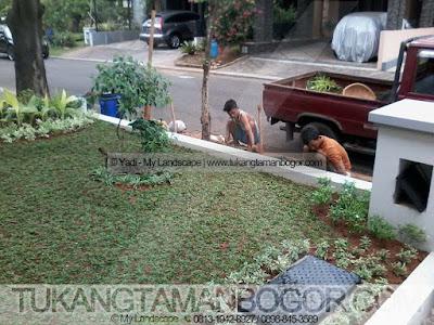 Tukang Taman Cibubur Murah & Profesional | Pembuatan Taman Minimalis Depan Rumah Dengan Harga Murah