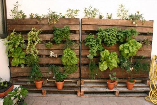 Sembrando en la biblioteca huertos urbanos for Jardines pequenos horizontales
