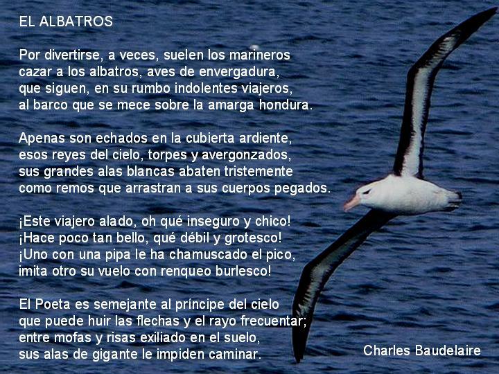 que nos dice baudelaire a traves del poema el albatros