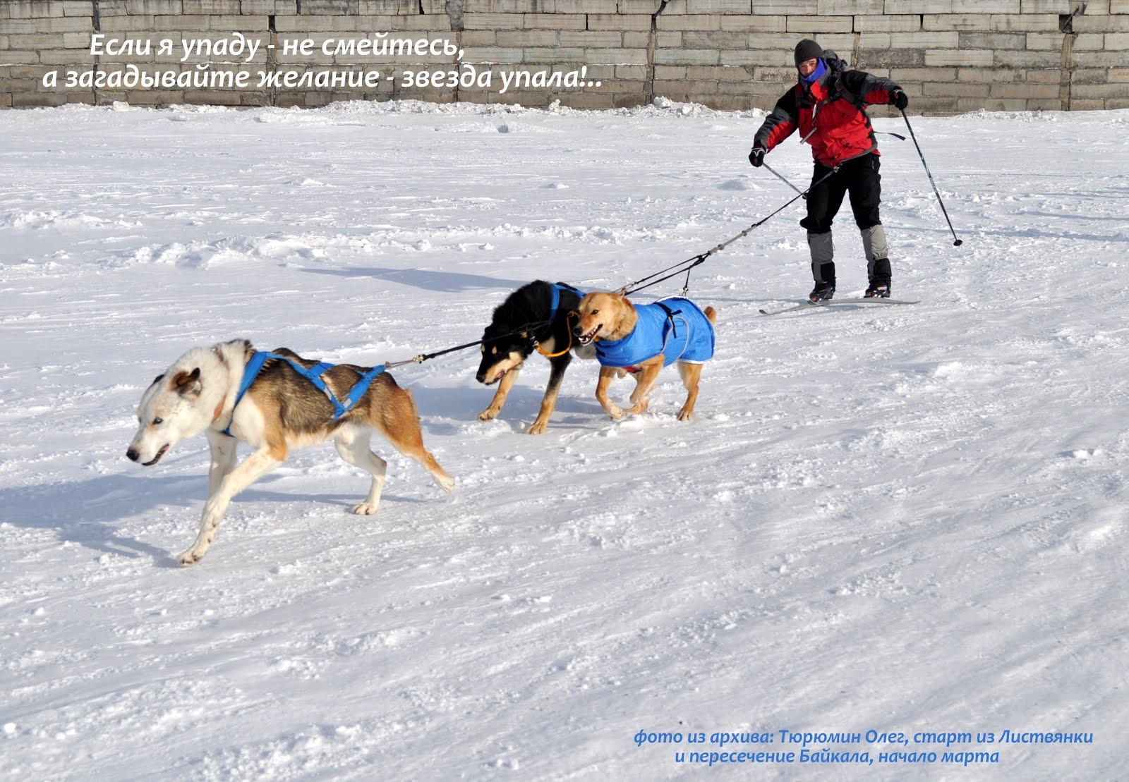Олег Тюрюмин, экспедиционный многодневный скиджоринг