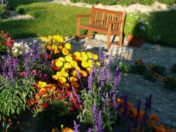 Bons plans jardinage un printemps pour un jardin fleuri for Organiser un jardin fleuri