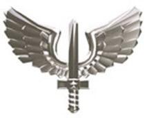 Farmacêuticos da aeronáutica