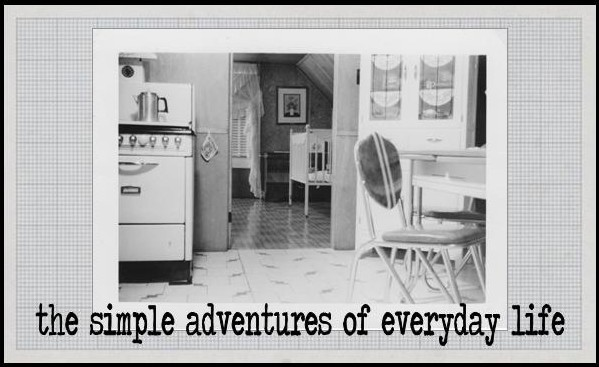 the simple adventures of everyday life