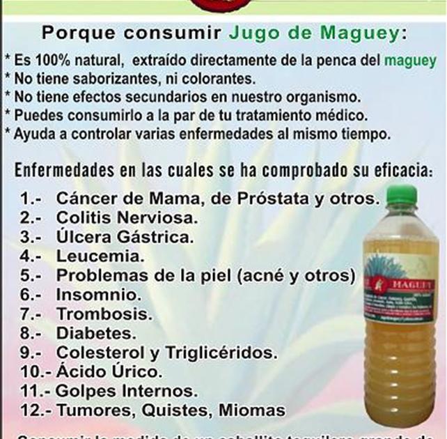 Jugo de Maguey: Beneficios del Jugo de Maguey