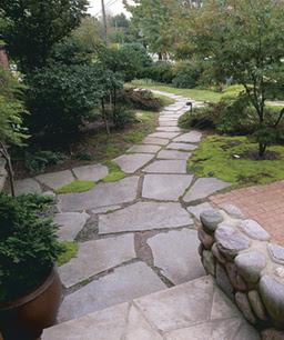 Grassless wishes subtropical gardening for Grassless garden designs