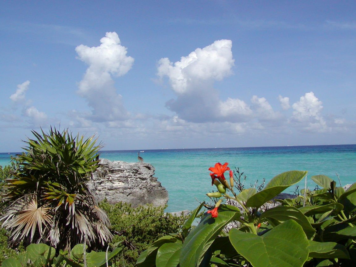 Playa Del Carmen, Mexico ~ Travel Places and Luxury Hotels