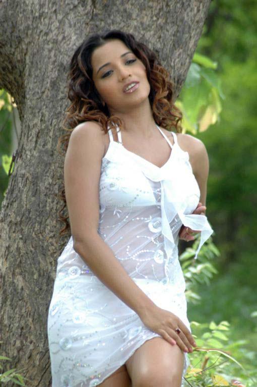 cute smart star of world soth indian actress monalisa