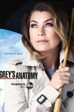 Grey's Anatomy S12E21 You're Gonna Need Someone on Your Side Online Putlocker