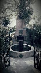 Astral Garden