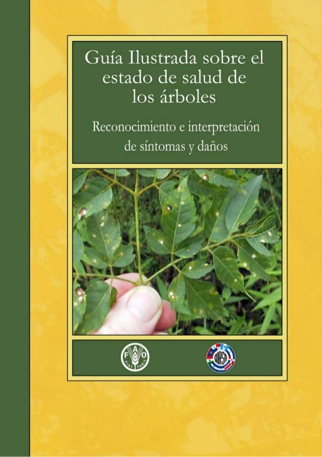 Guía Salud Arbórea