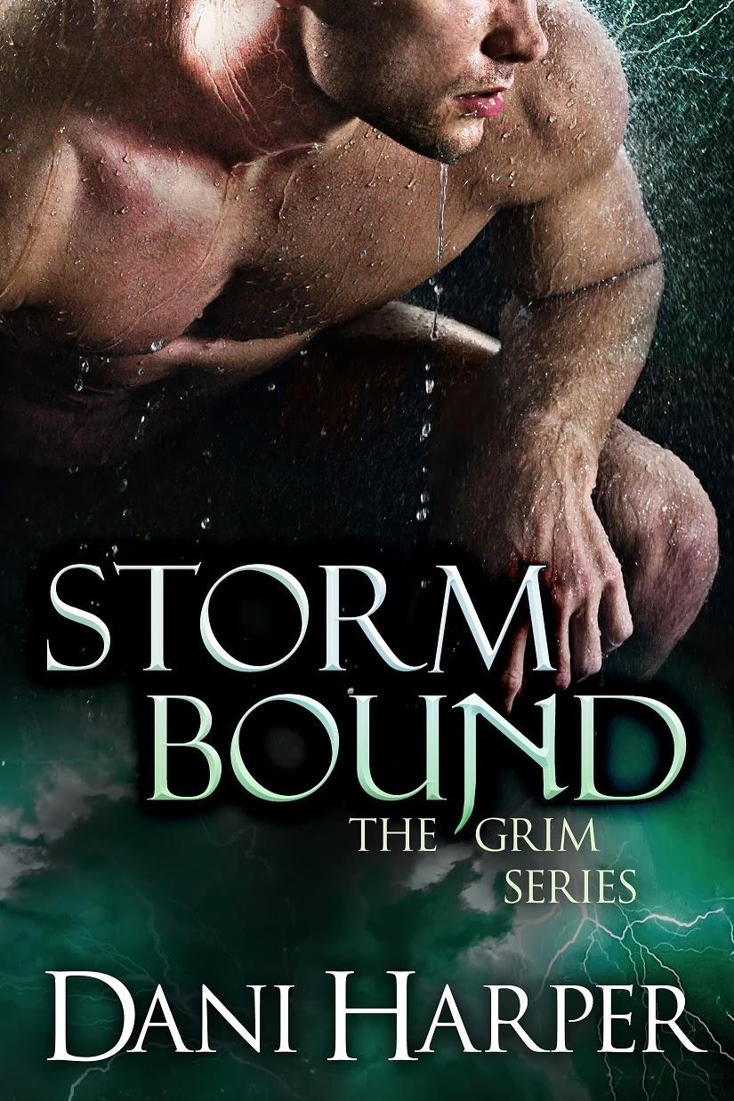 Storm Bound, Dani Harper, paranormal romance, cover