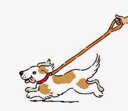 Invierno y pérdida de perros