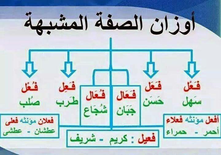 اوزان الصفة المشبهة في العربية
