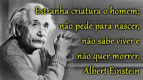 Frase Albert Einstein