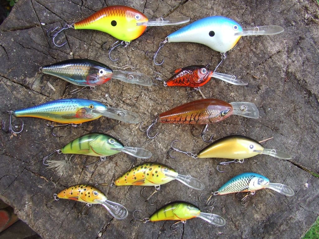 catfish lures and bait