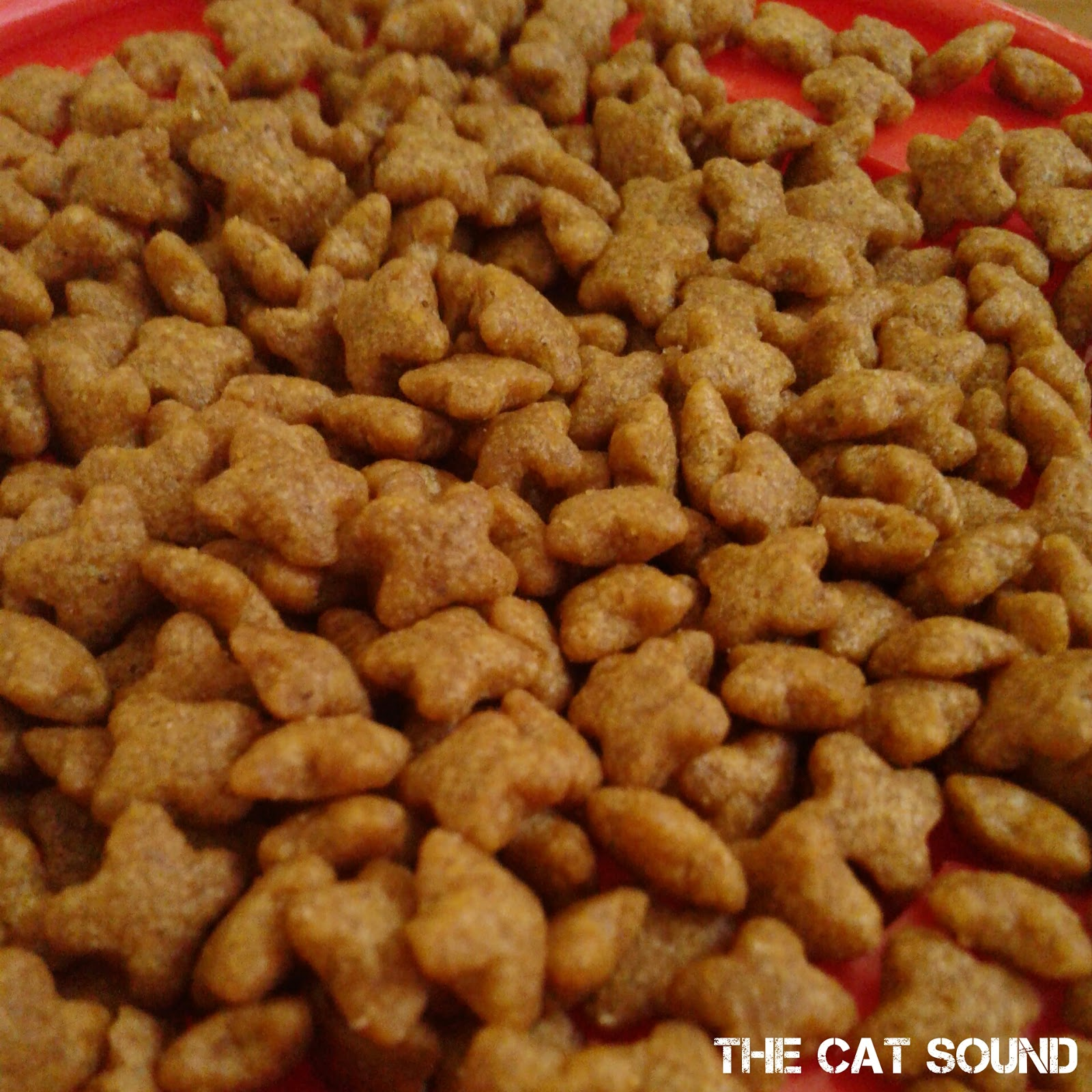 The Cat Sound Review Makanan Kucing Me O Kitten Dry Food