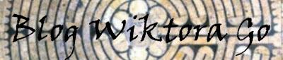 Blog Wiktora Go