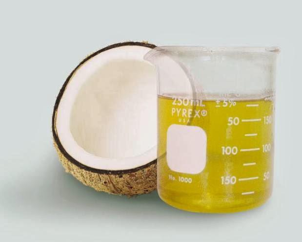 Contoh Makalah Virgin Coconut Oil