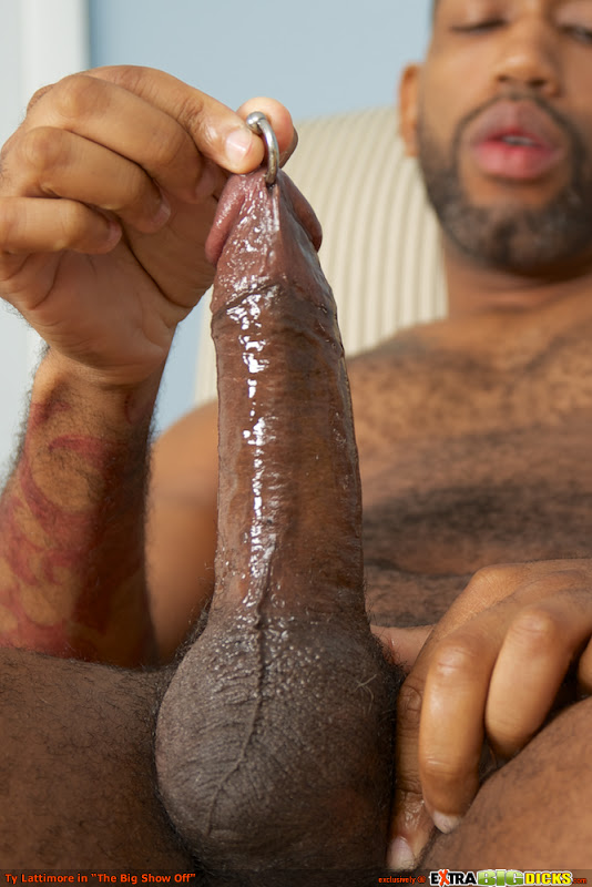 Does Penis Size Matter? Why Bigger Male Genitalia