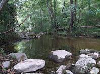 El riu Ges des de la passera