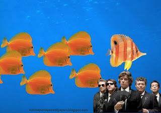 Xutos e Pontapés Wallpapers Foto da Banda em fato de cerimónia em fundo de tela Aquário com Peixes