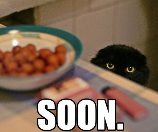funny-meme-animals-soon-005.jpg