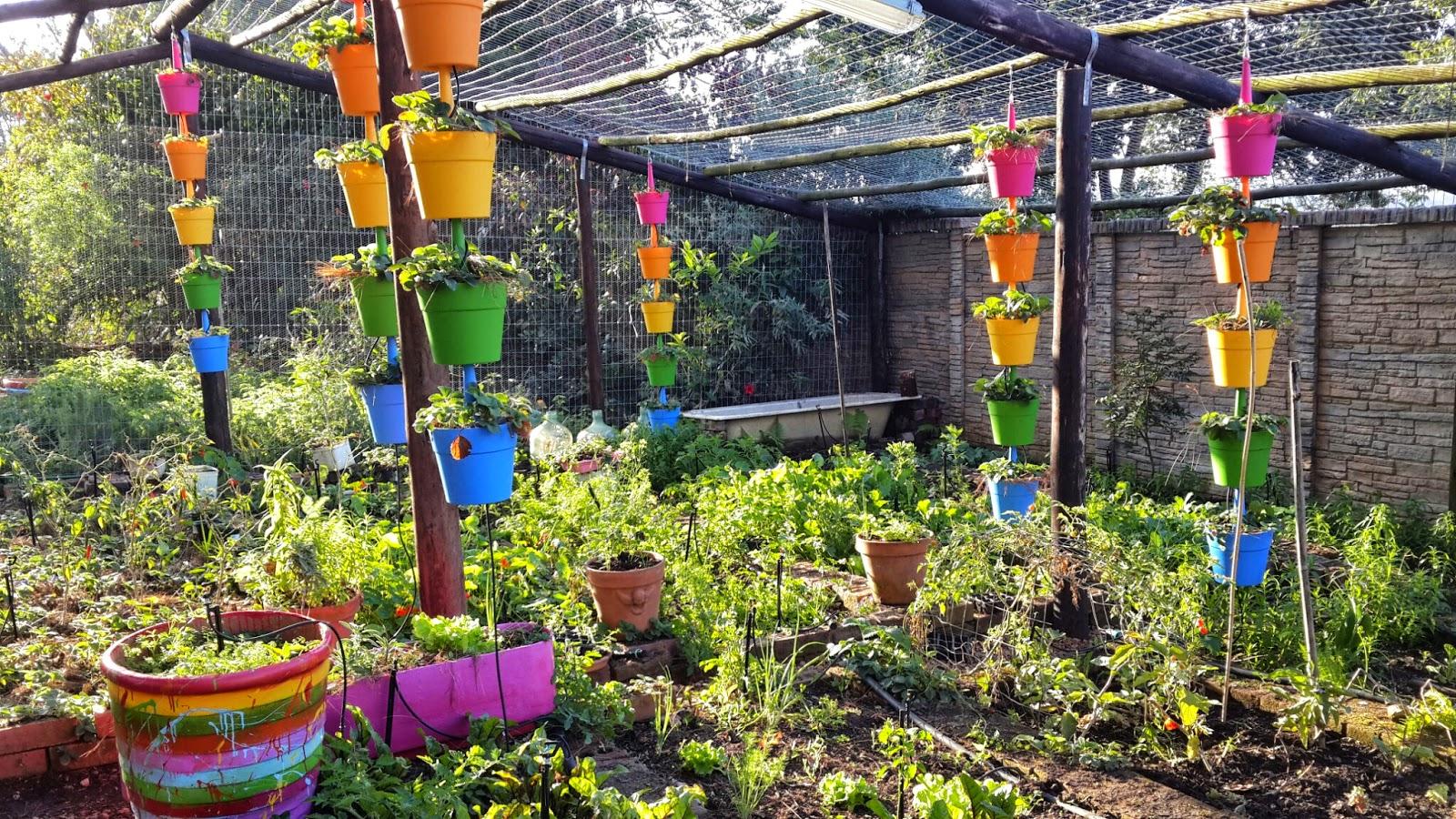 Superb Growing Strawberries In Pots Part - 11: Superb Growing Strawberries In Pots Ideas