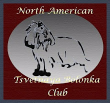 North American Tsvetnaya Bolonka Club