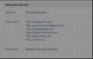 Cara Melihat Email Facebook Yang DiSembunyikan 2013